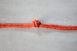 Ropehalter-orange