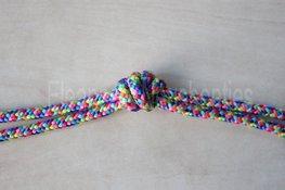 Ropehalter- Rainbow