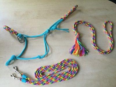 SET! Ropehalter+reins+neckrope